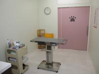 犬 診察室
