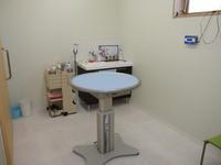 猫 診察室
